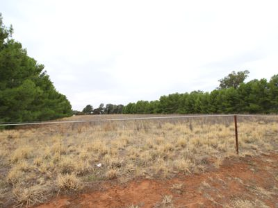 Lot 12 Green Street West, Lockhart