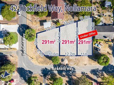 42 Tuckfield Way, Nollamara