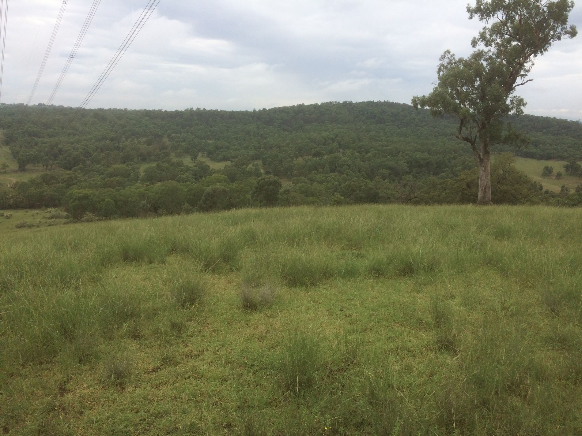 Lot Lot 7, Tunbridge Road , Merriwa